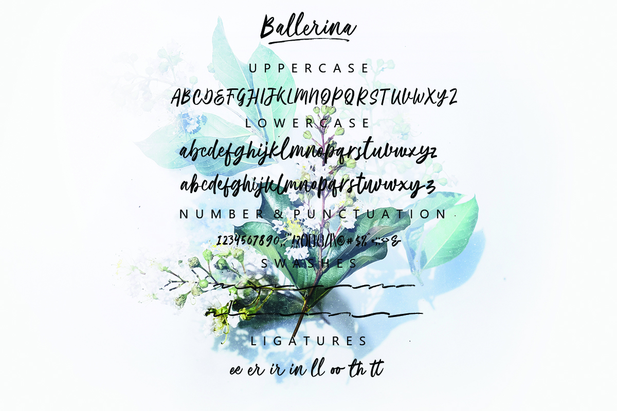 Ballerina| Script Font example image 11