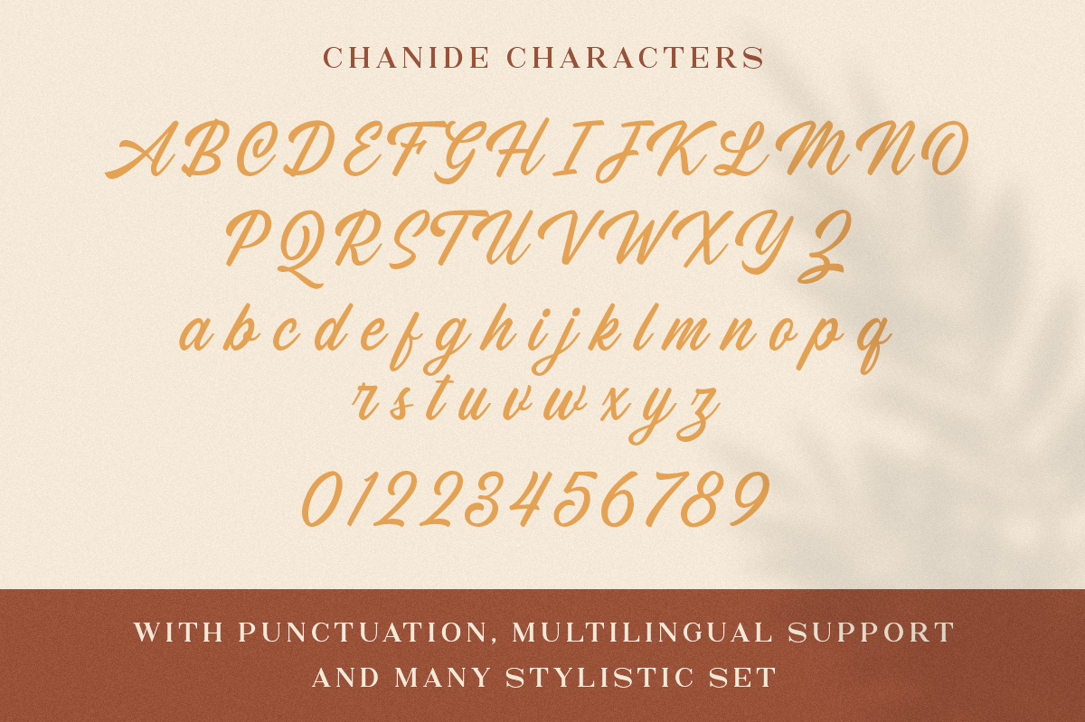 Chanide Script example image 14