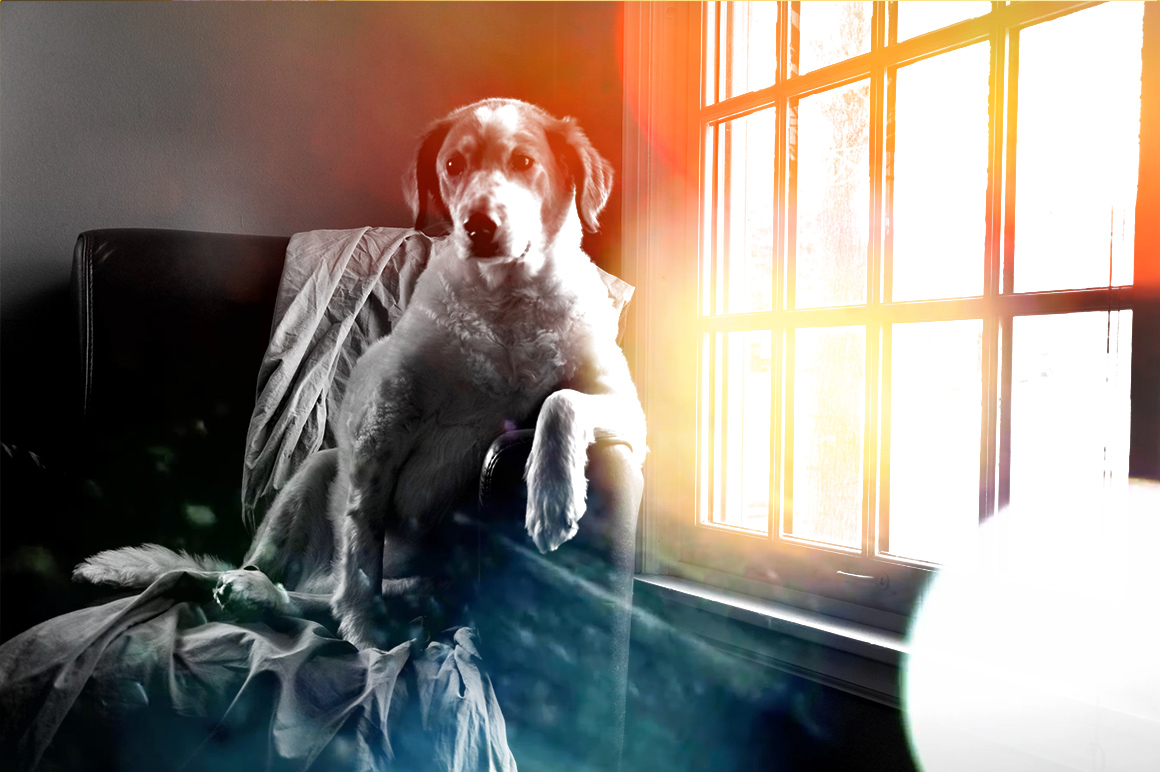 Add Bokeh Overlay Photoshop Actions example image 5