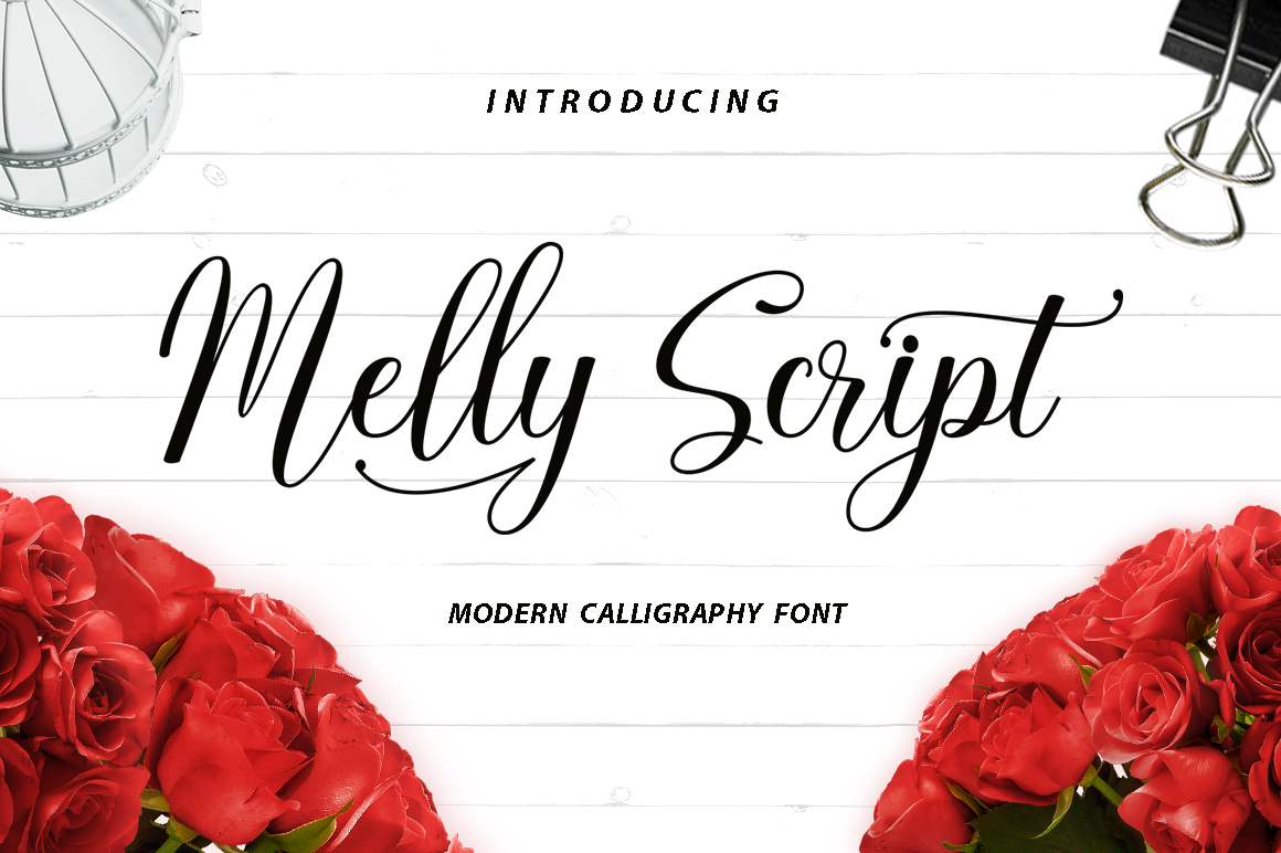 The Calligraphy Font Bundle example image 7