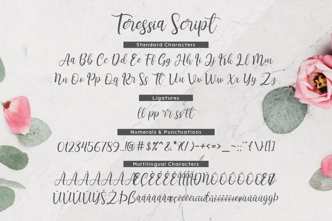 Teressia Script example image 7
