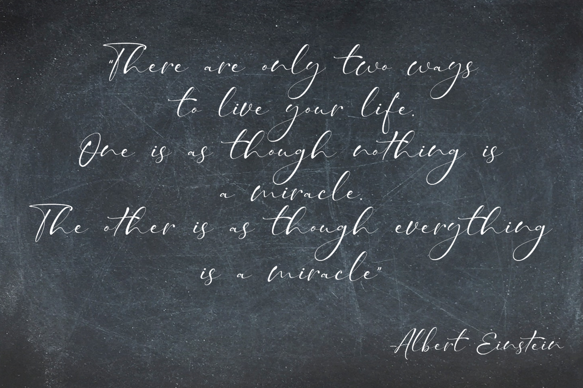 Taman Signature   Stylish Modern Script example image 10