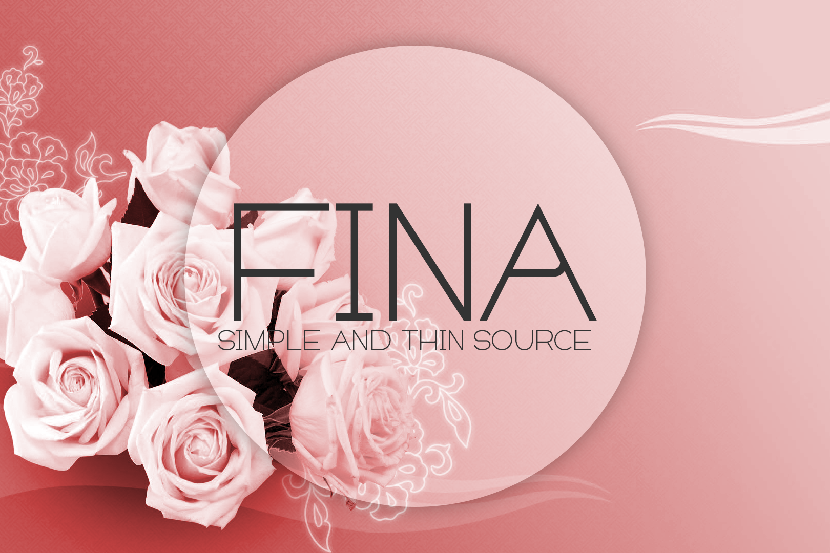 Fina Font example image 1