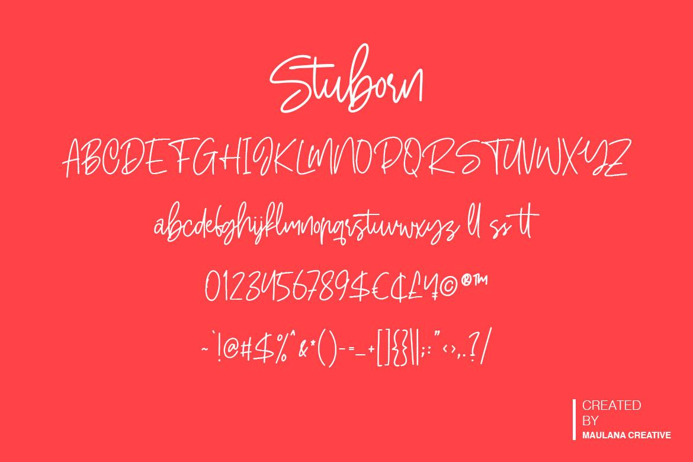 Stuborn - Modern Handwritten Font example image 10