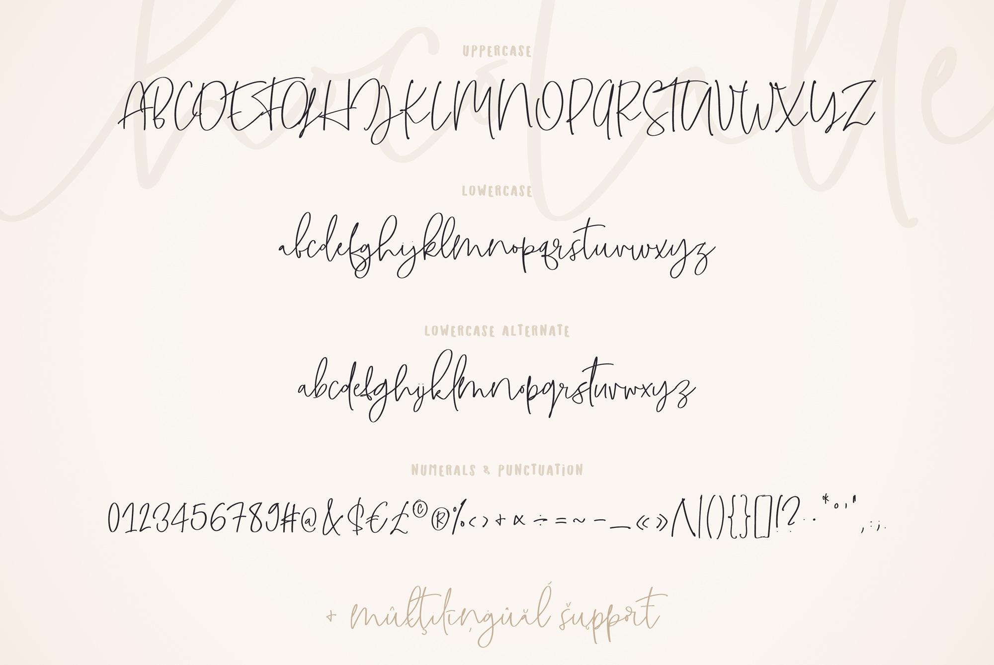 ChocoLatte Handwritten Script Font example image 7