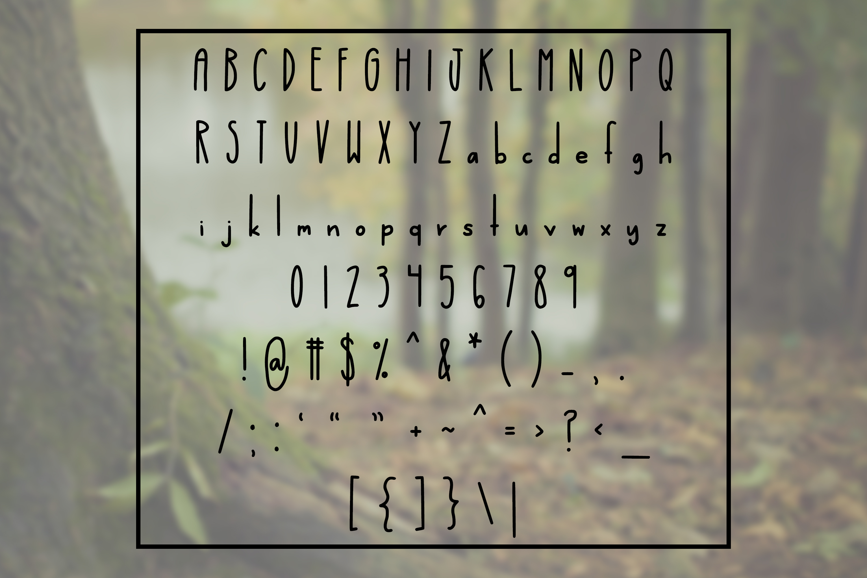 Wonderful Willow - Tall and Modern Handwritten Font example image 2