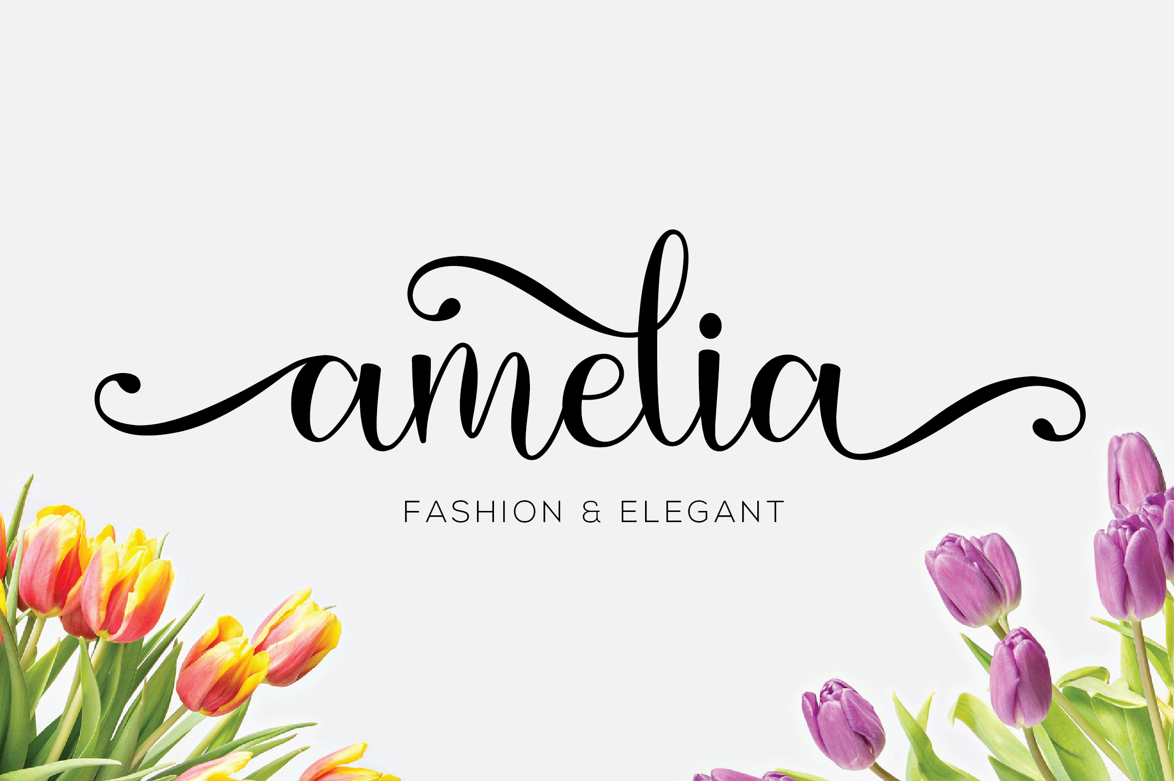 amelia script example image 3