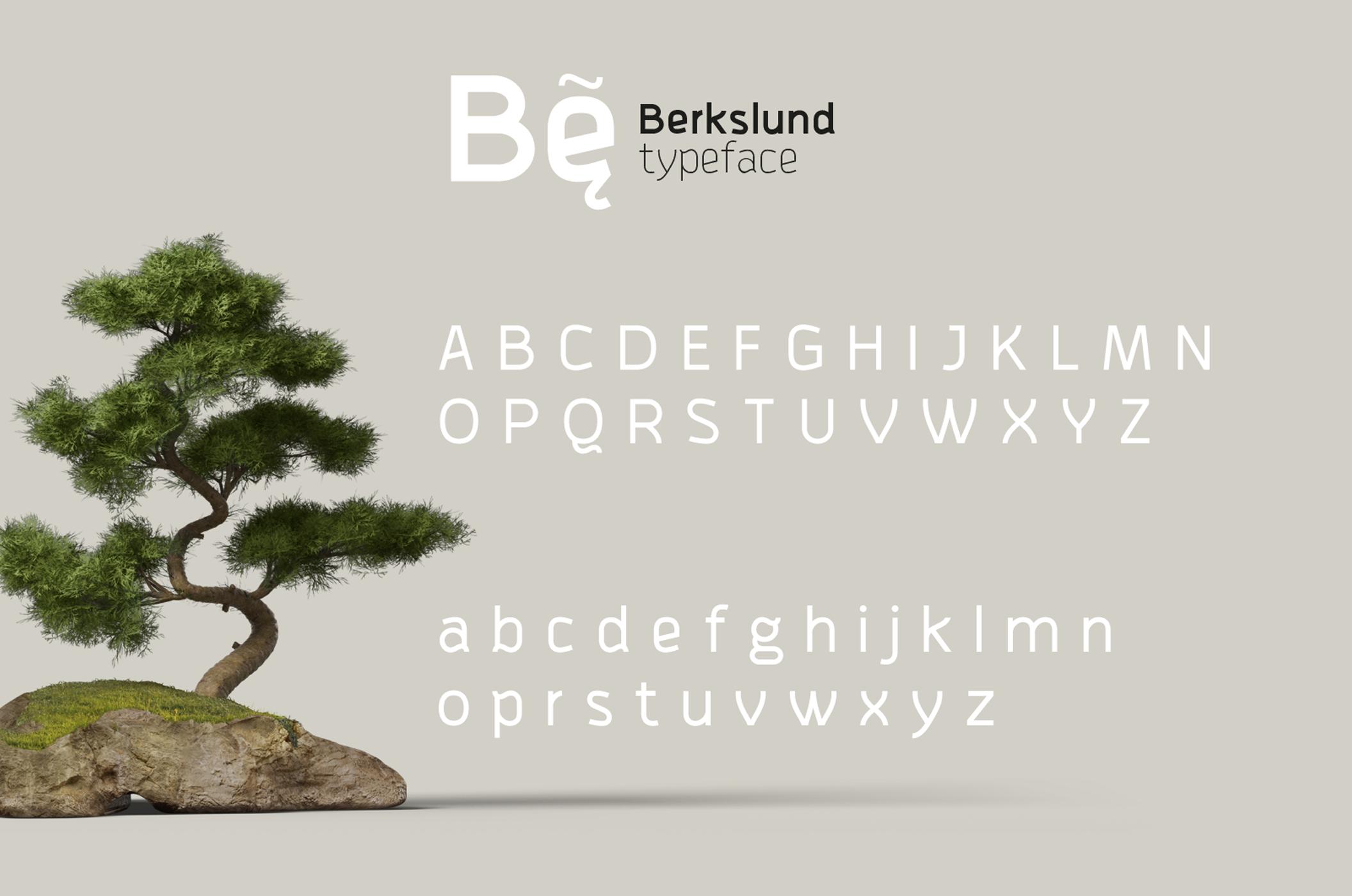 Berkslund example image 5