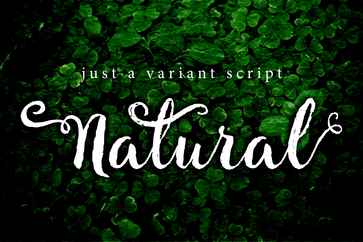 Natural Script example image 2