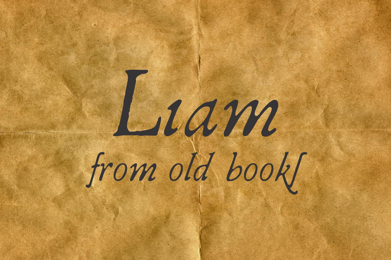 Liam example image 1