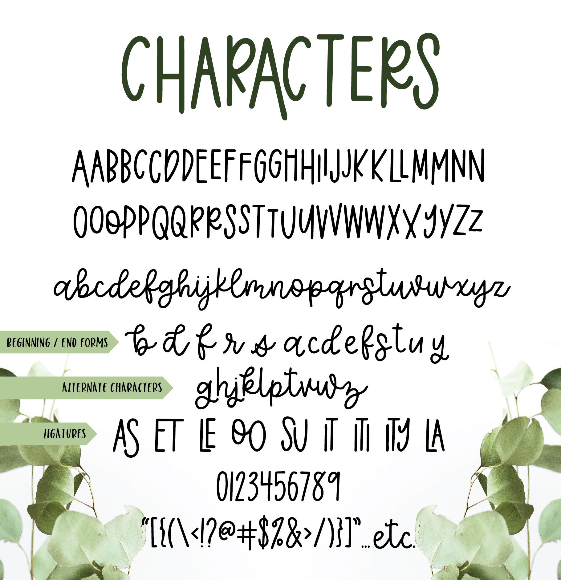 Eucalyptus Spearmint, A Smooth Monoline Font Duo example image 10
