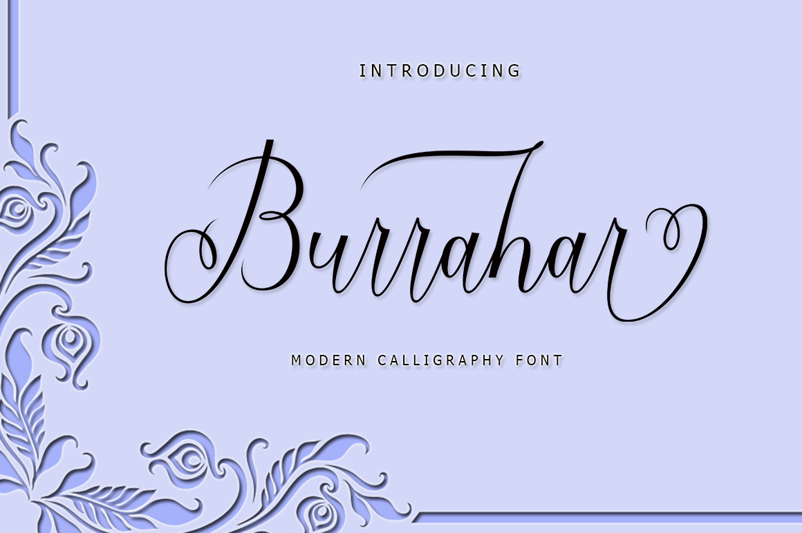 Font Collection | 12 Font example image 10