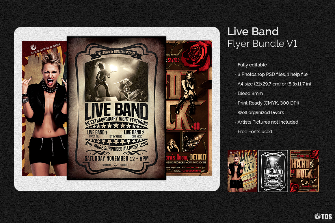 Live Band Flyer Bundle V1 example image 3