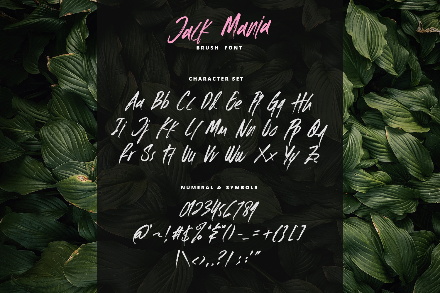 The JACK MANIA Brush Font example image 7