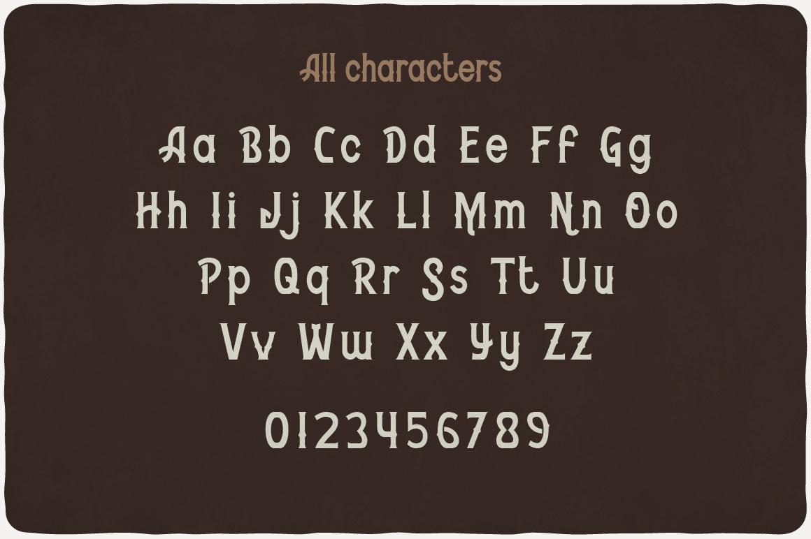 Whiskey Fonts Bundle example image 8