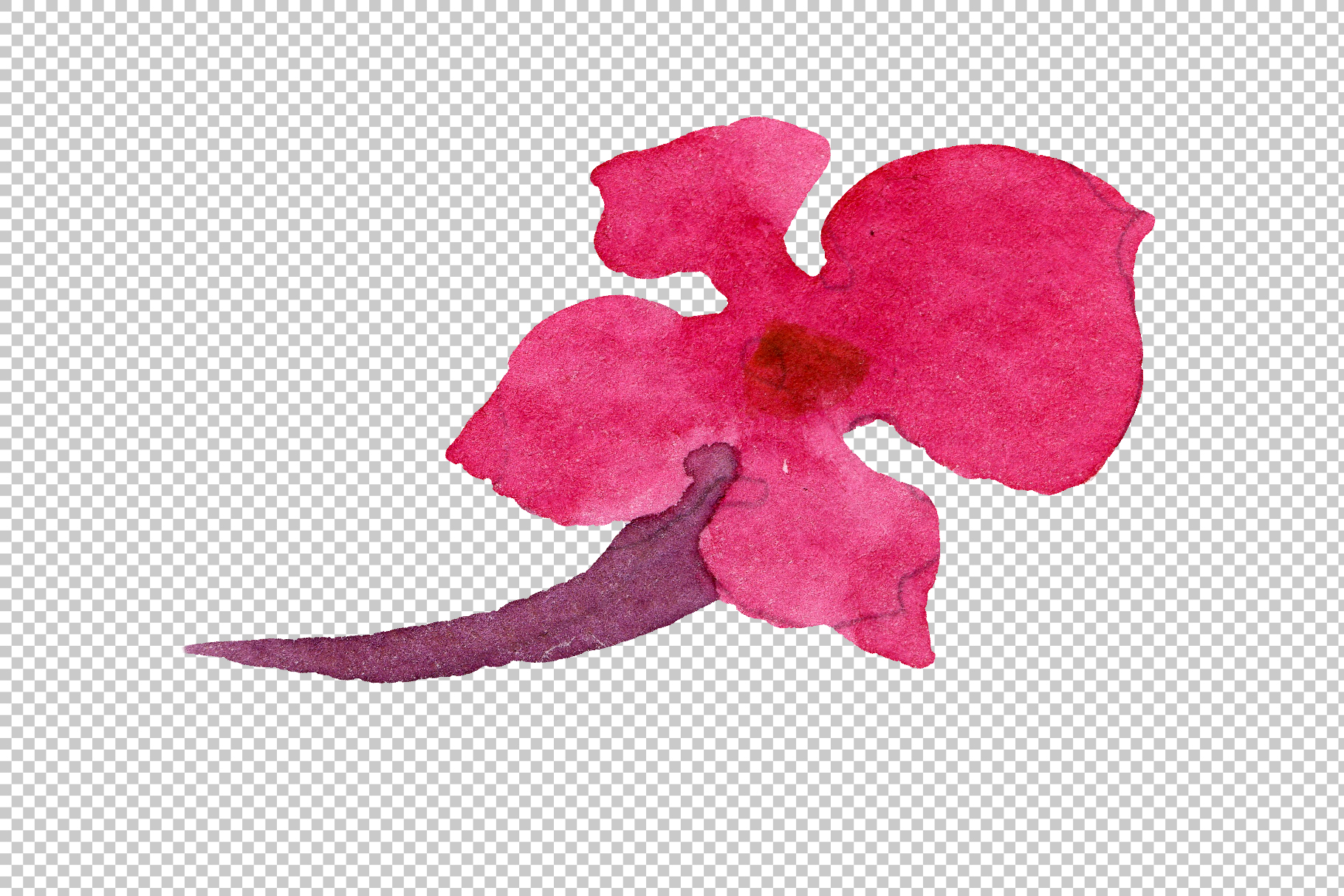 Red Lantana Watercolor png example image 12