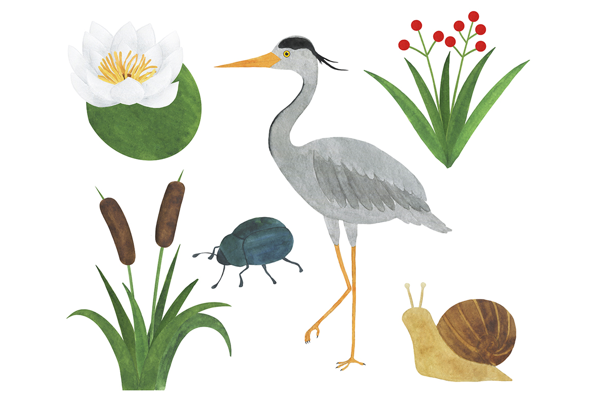 Set of heron watercolor illustrations example image 3