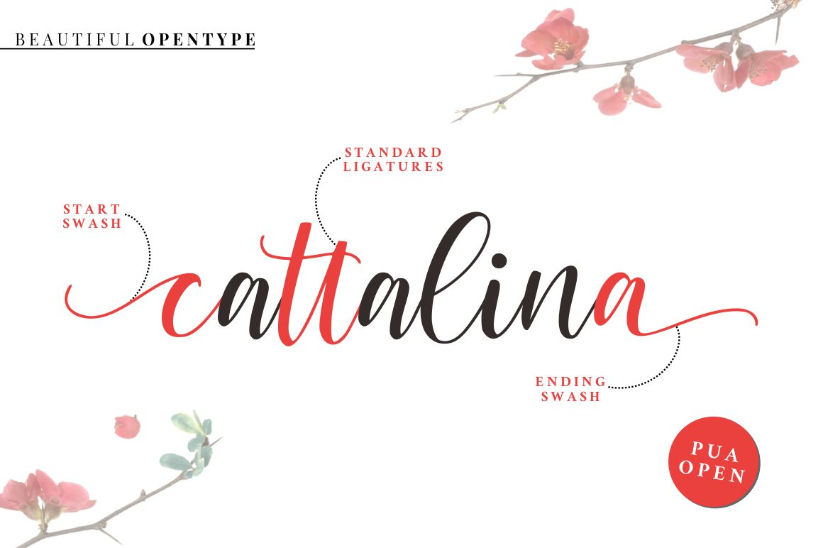 Cattalina - Beauty Script Font example image 5