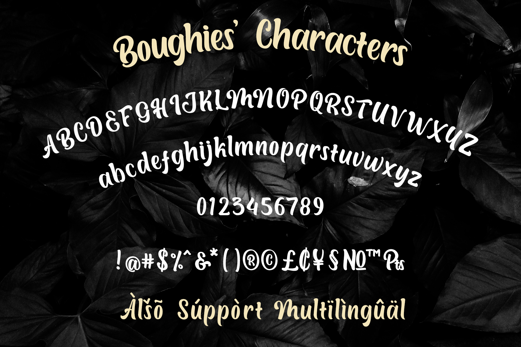Boughies Display Typeface example image 2