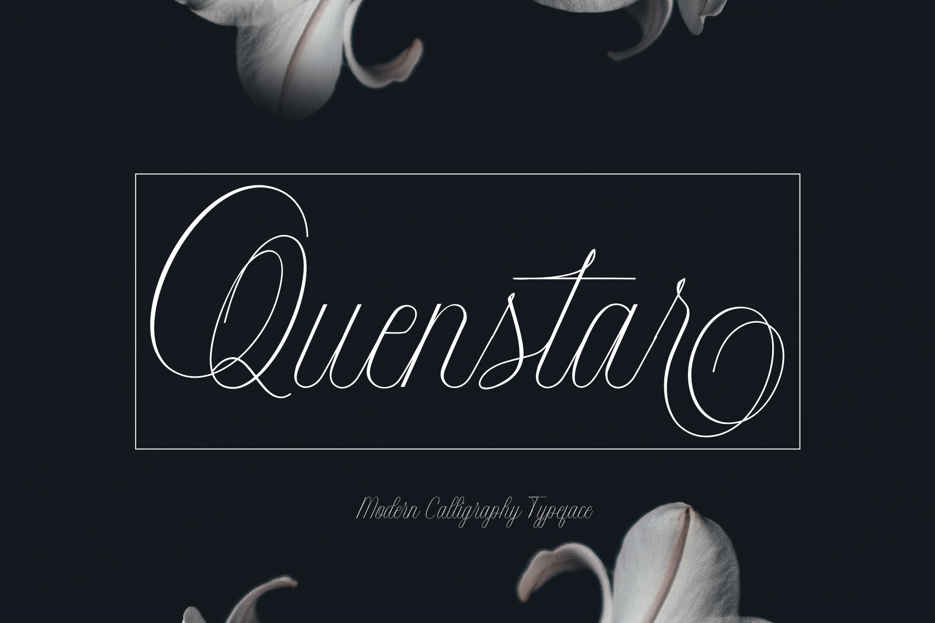 Intelligent | Duo Font Style example image 2