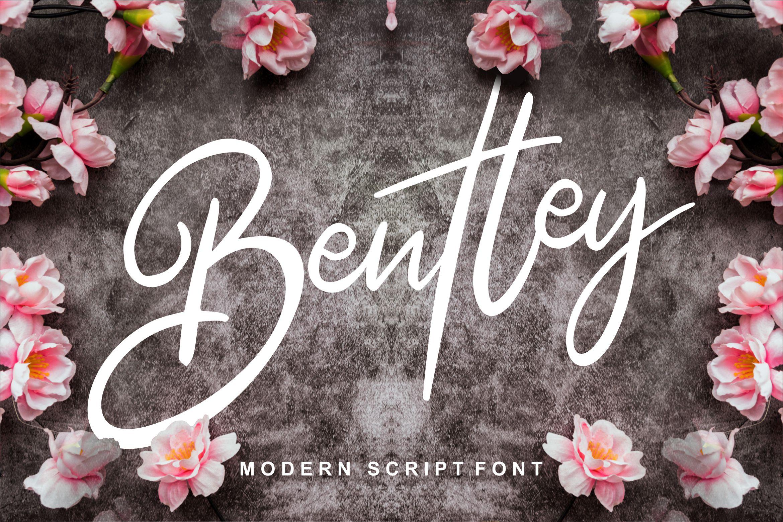 Bentley | Modern Script Font example image 1