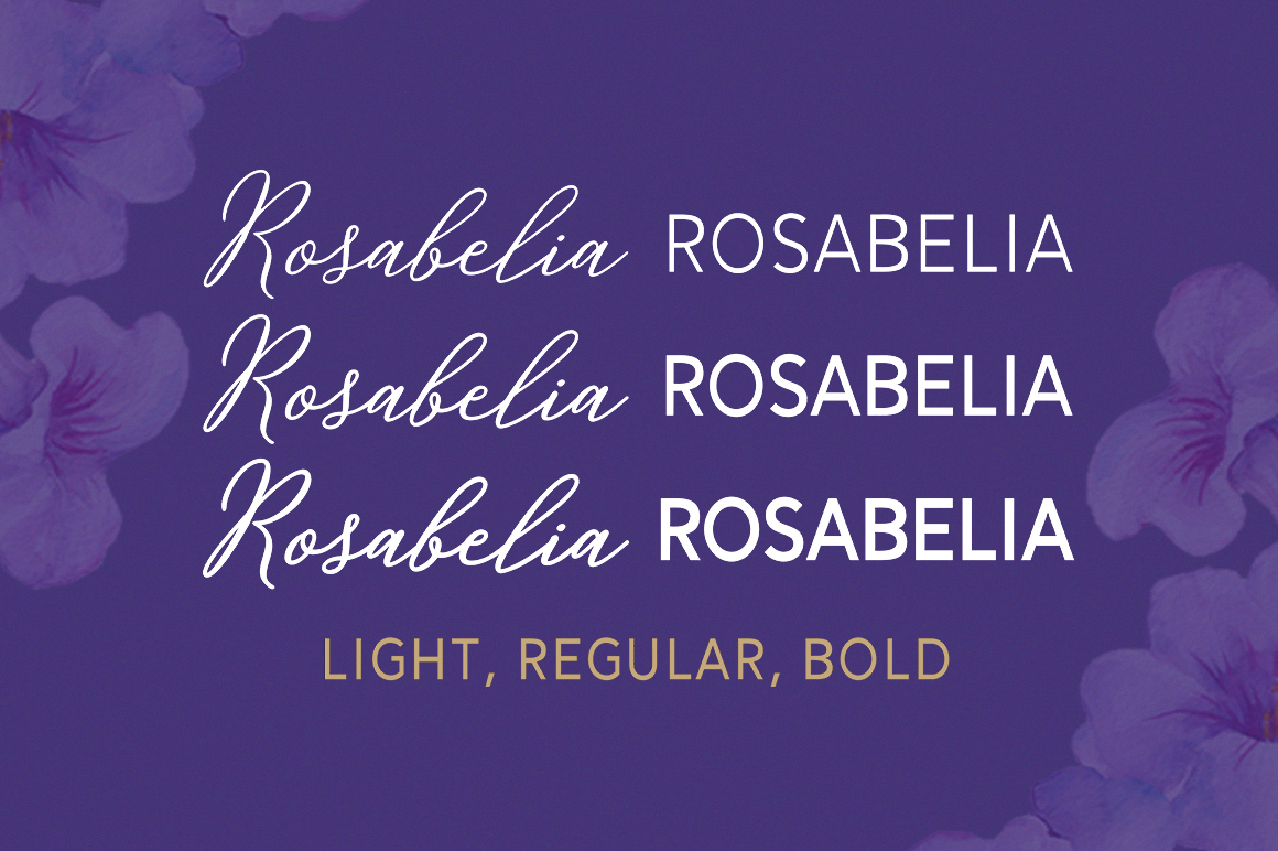 Rosabelia - Script & Sans Serif example image 3