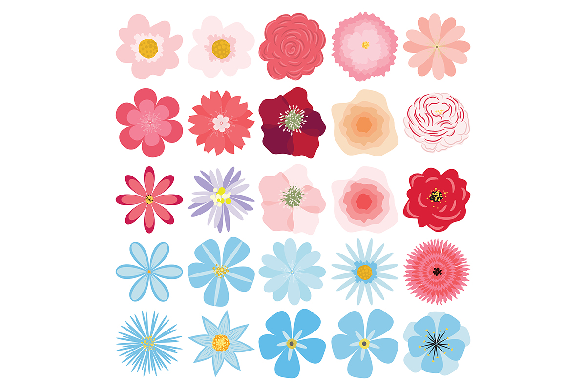 Flower collection. Vector set of plants, flowers and herbs. example image 3