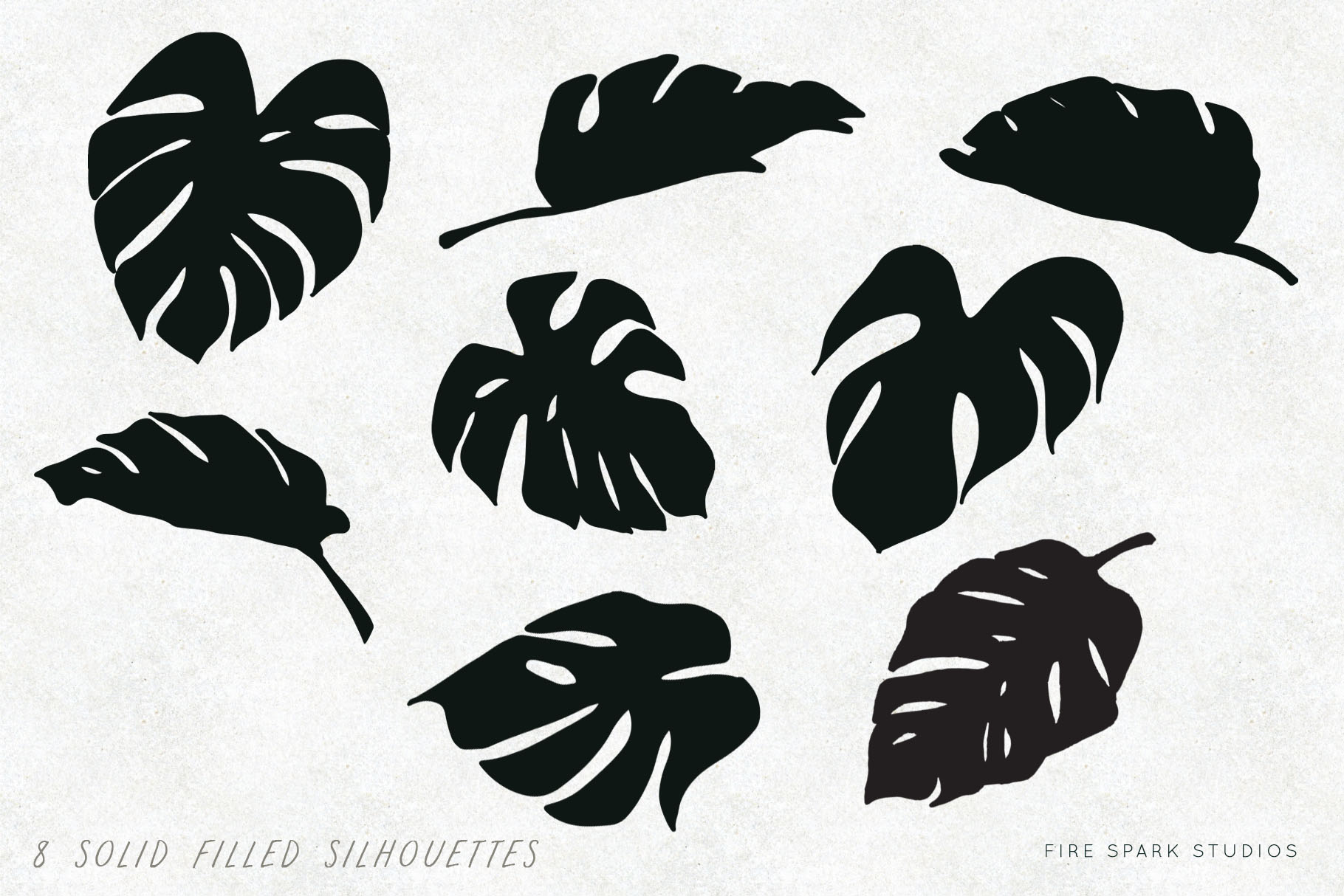 Monstera Vector Illustrations & Patterns example image 3