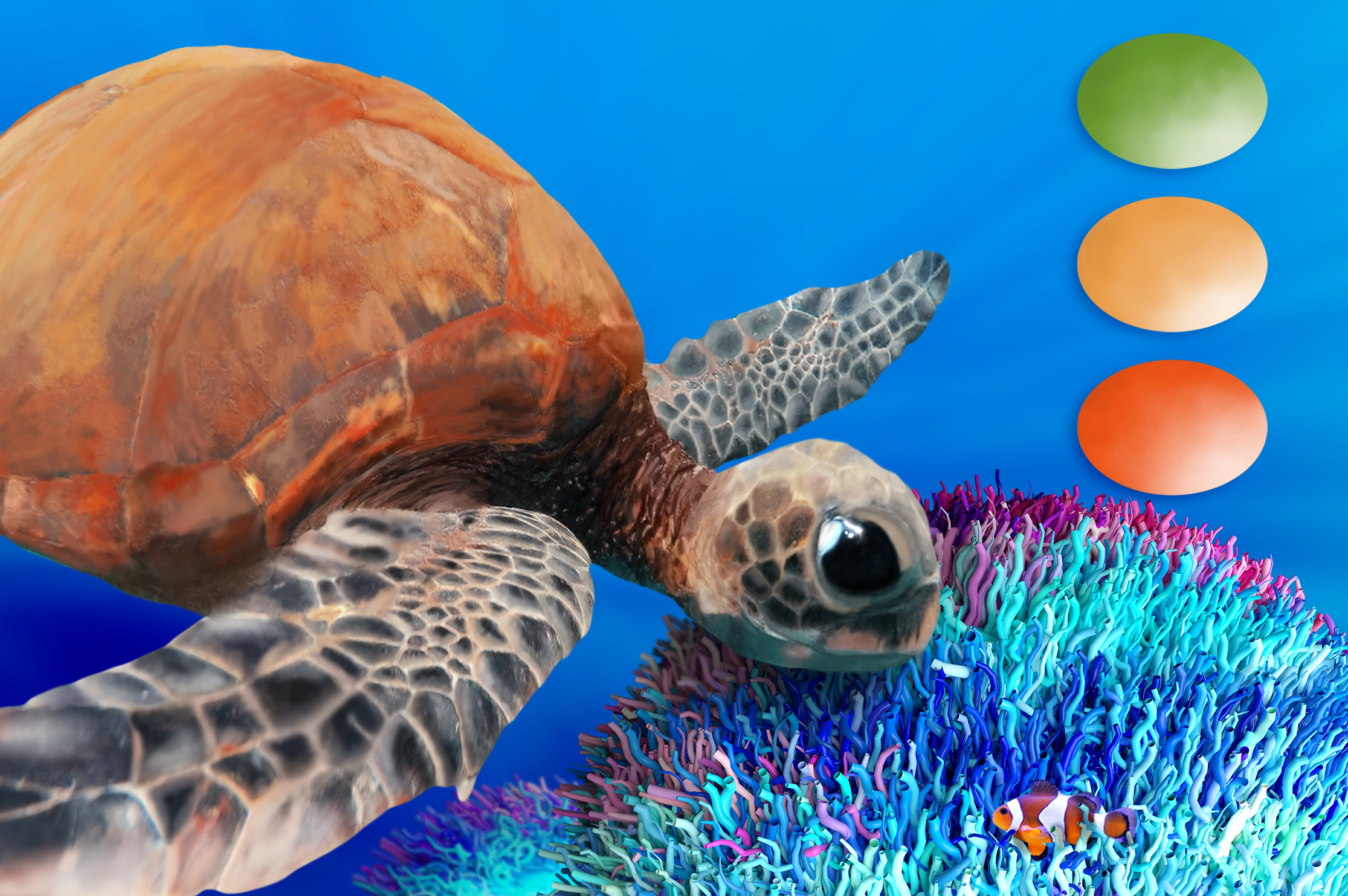 Turtle Swatches & Coral Overlays example image 2