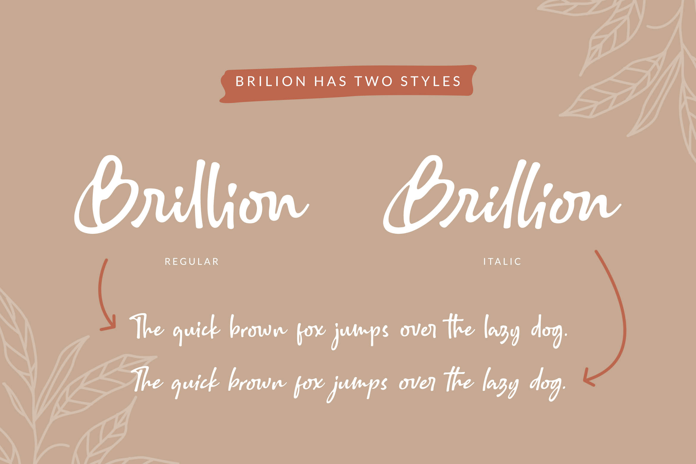 Brillion Rounded Script Font example image 8
