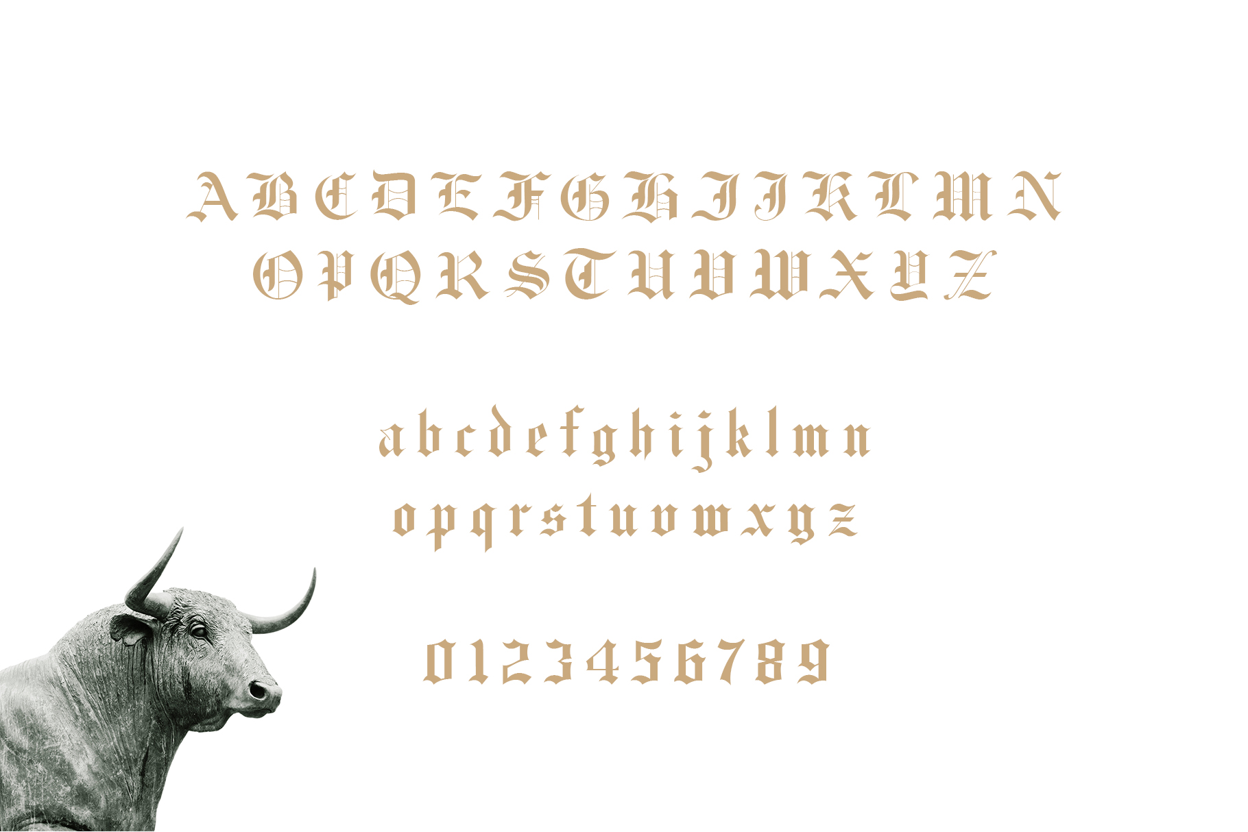 Fullerton Typeface Font example image 8