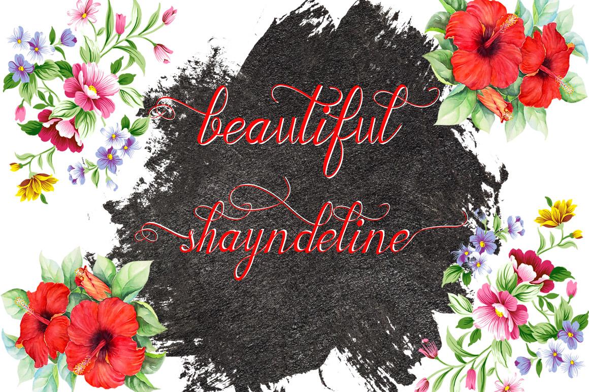 Shayndeline example image 4