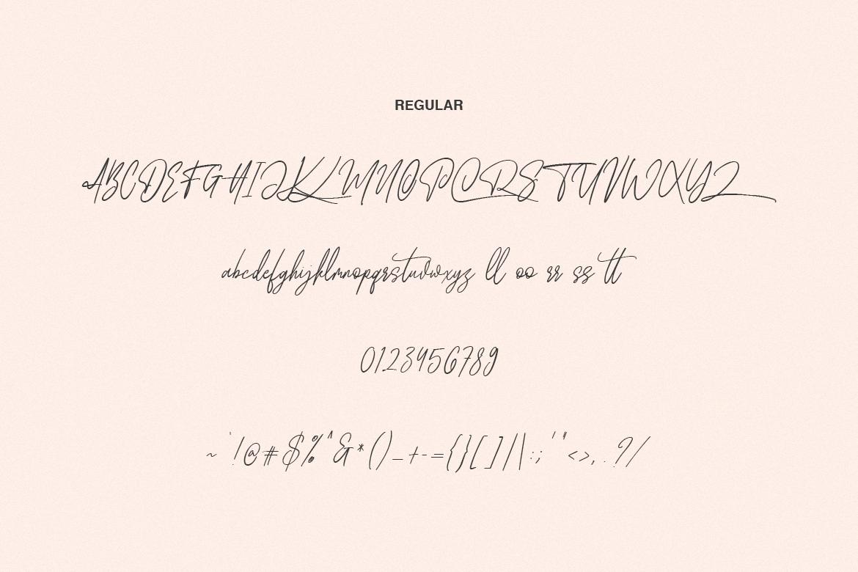 Wellfare - Handwritten Swash Font example image 7