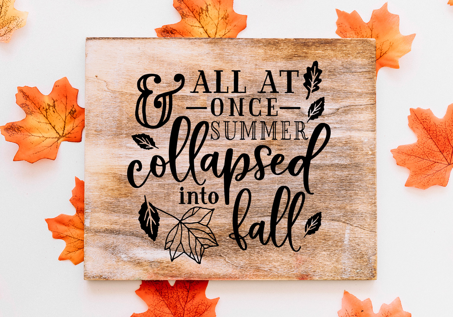 Pumpkin & Fall Quote SVG Cut File Bundle example image 7