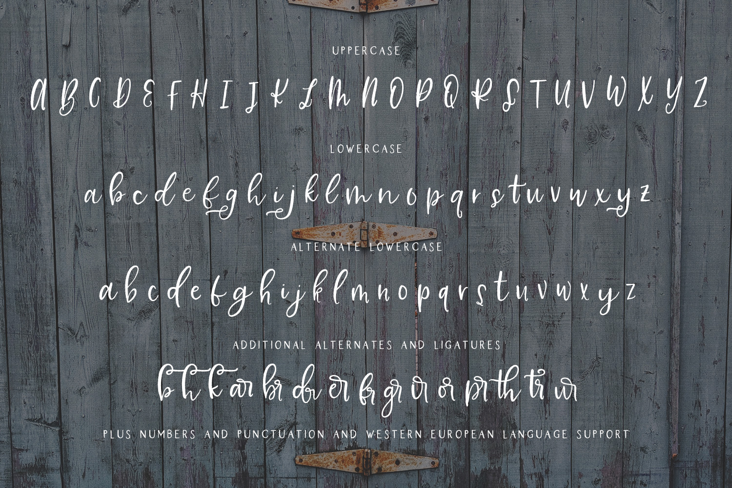 Farmhouse Country Rustic Cursive Font example image 10