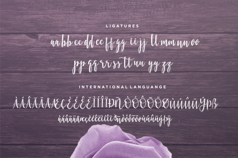 Bellattrix - A Modern Script Font example image 11