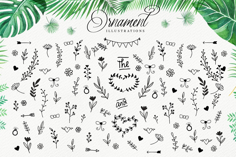 Olwas Script (Extra bonus 200+ ornaments) example image 4