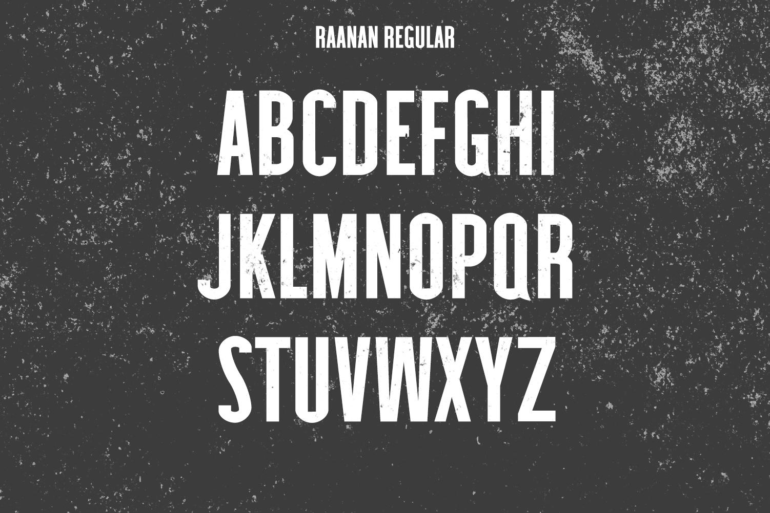 Raanan Classic Sans Serif Font Family example image 2