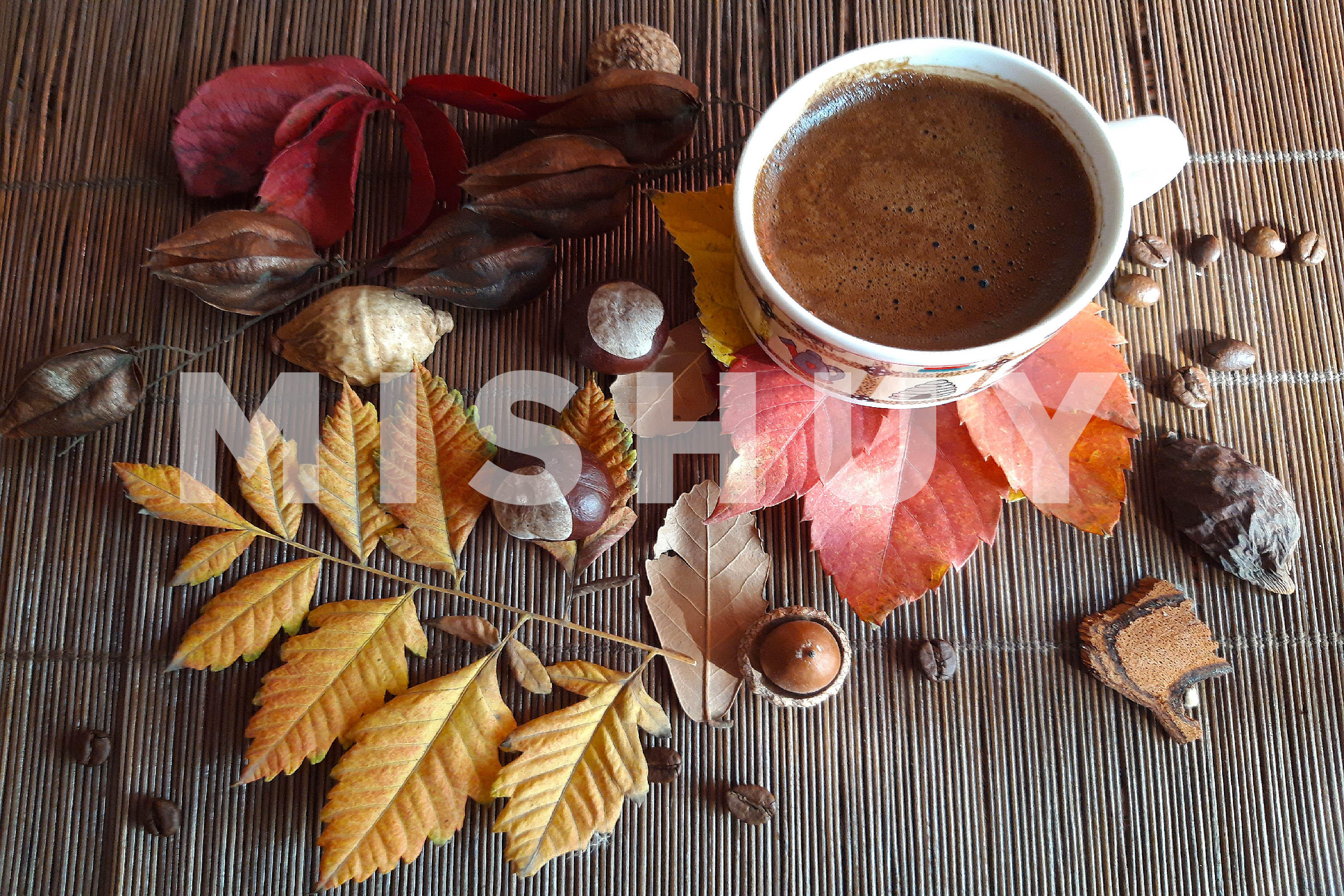 Autumn composition. Cup of coffee and autumn leaves3 example image 1