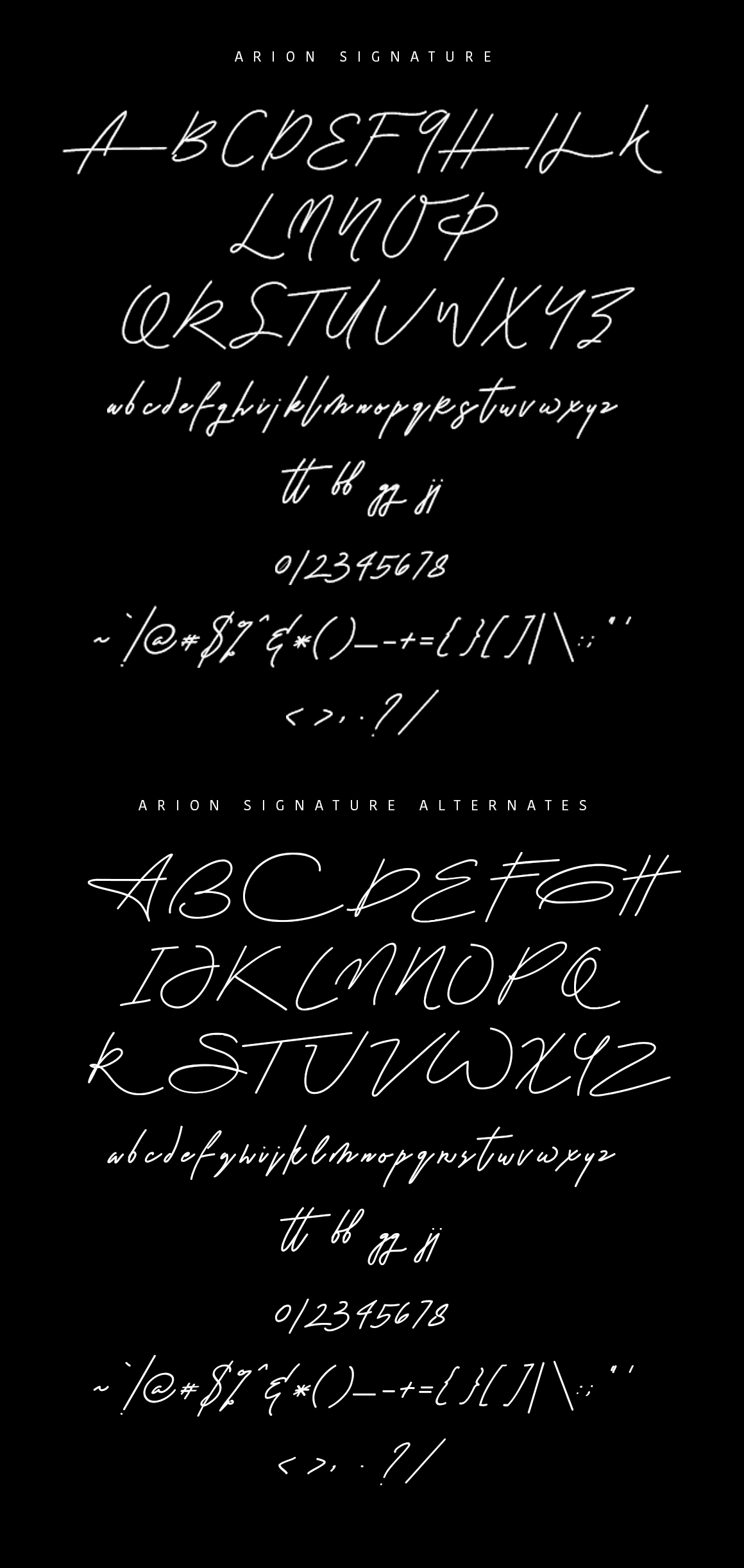 Arion Signature Font example image 2