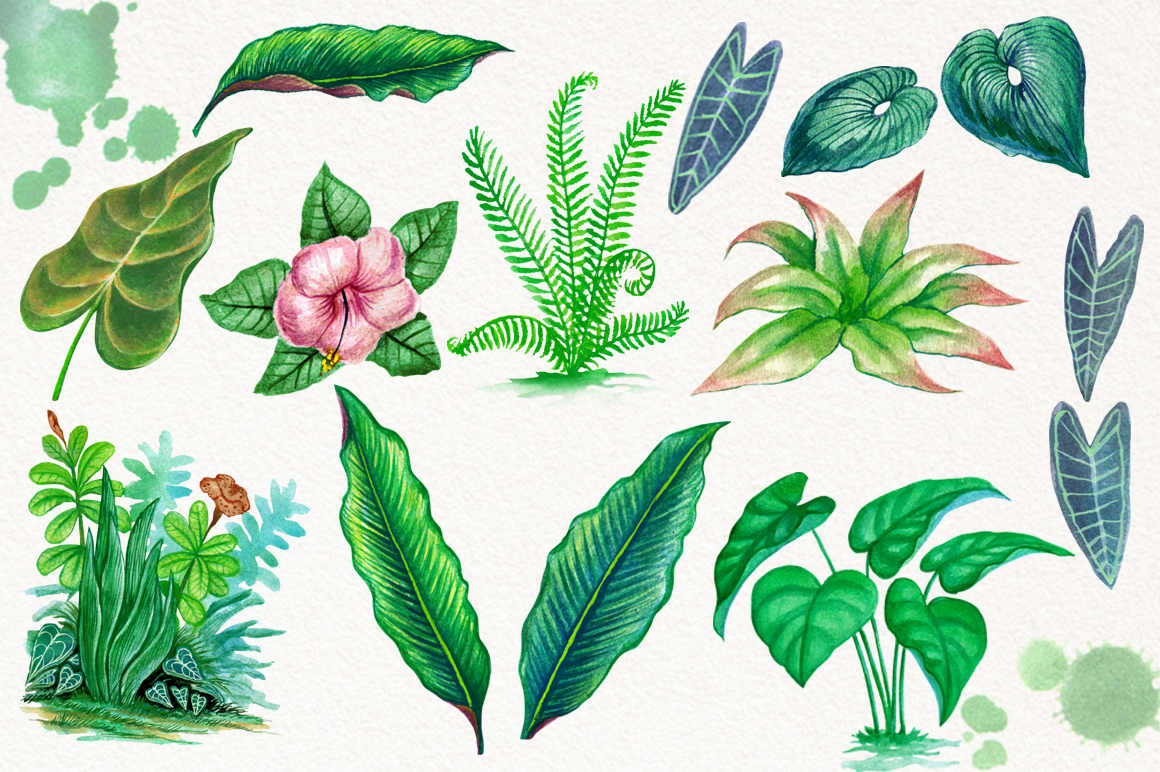 Tropical Leaves in the Jungle example image 5