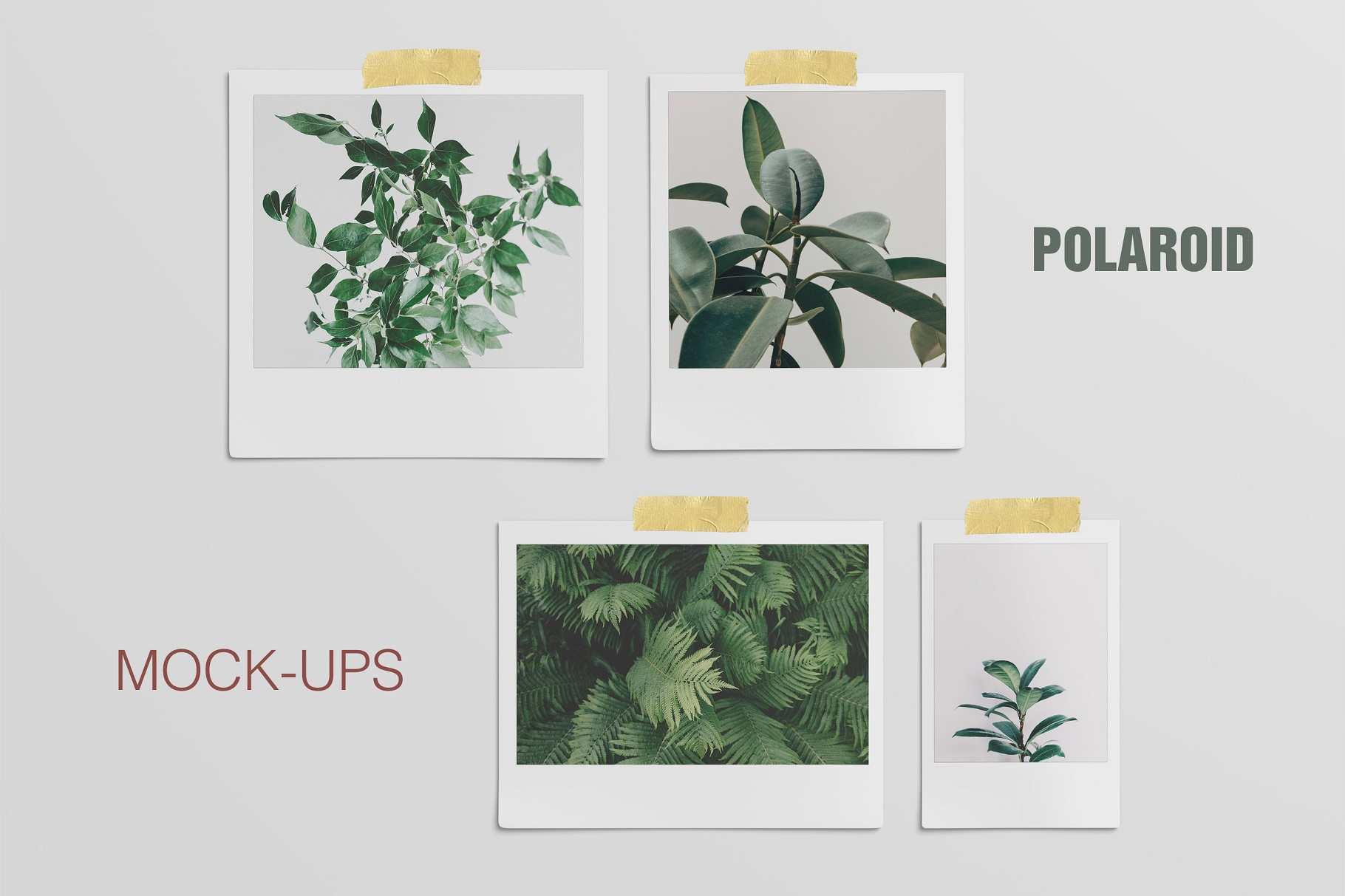 Polaroid Mockups Set example image 1