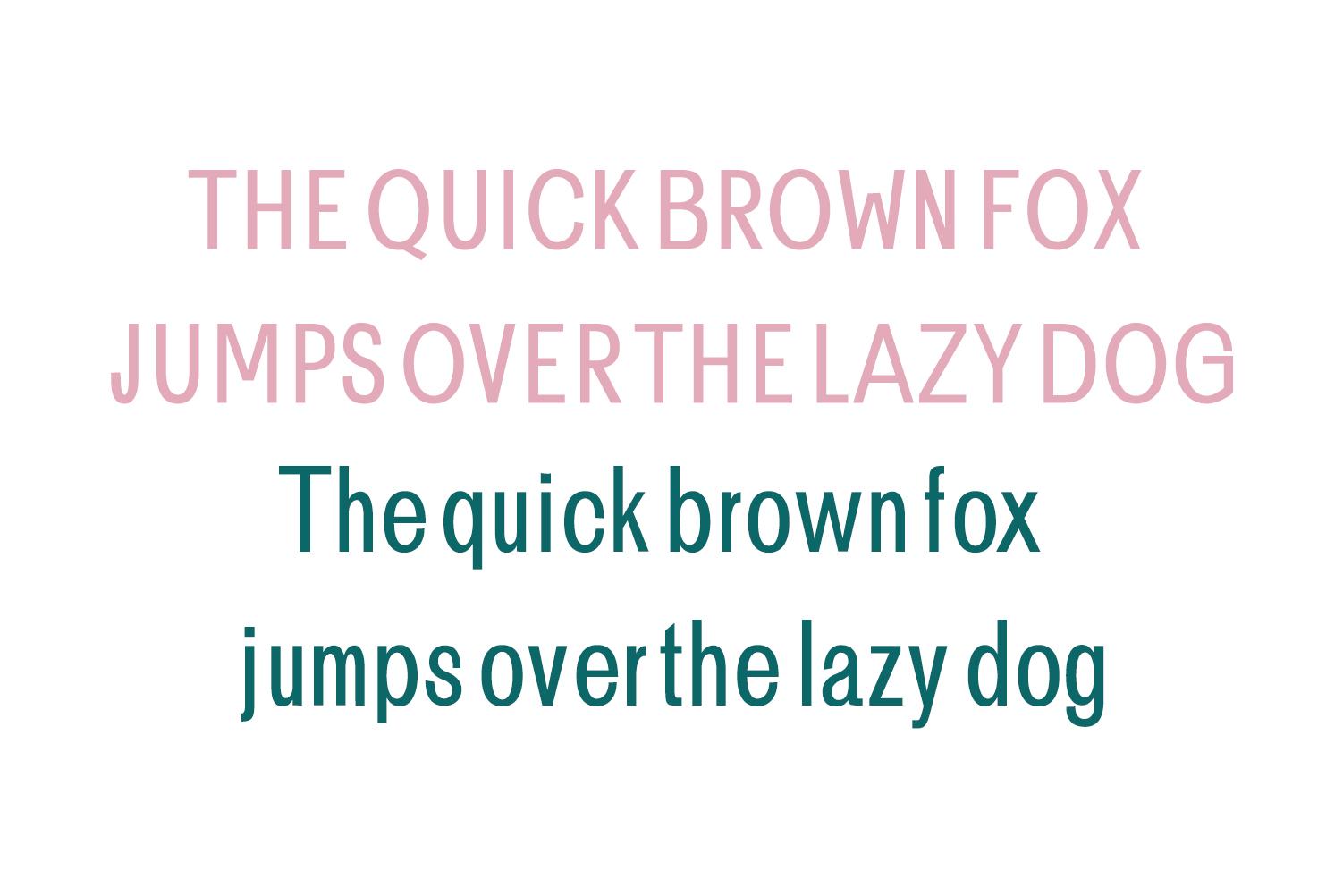 Brendon Sans Serif Typeface example image 7