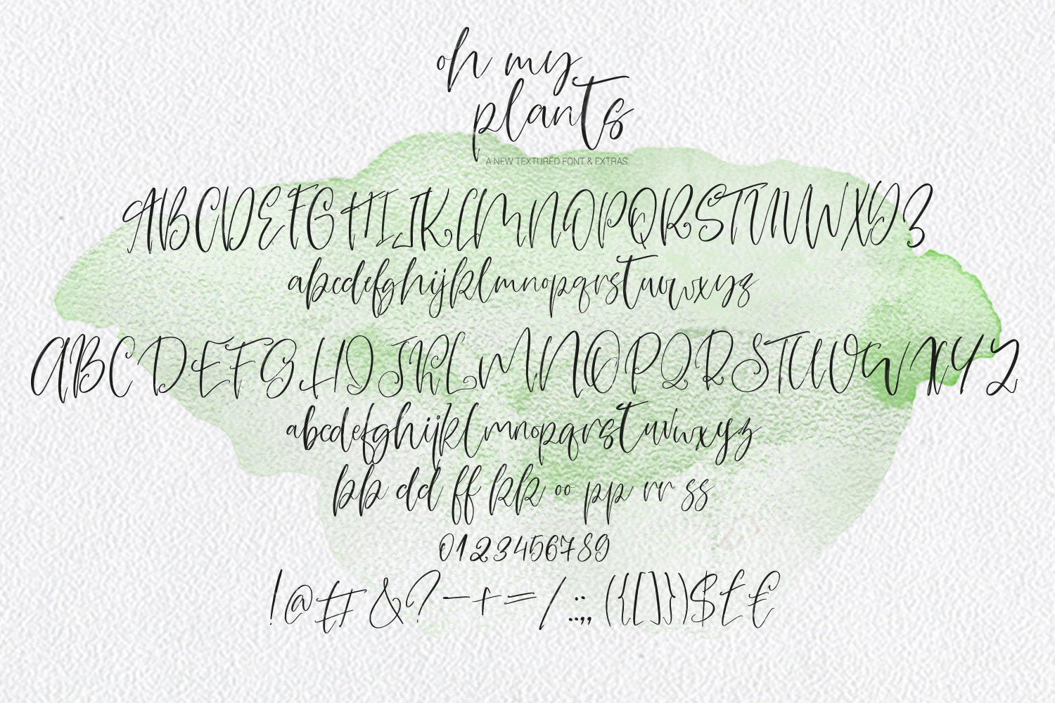 Oh My Plants Textured Font & Doodles example image 6