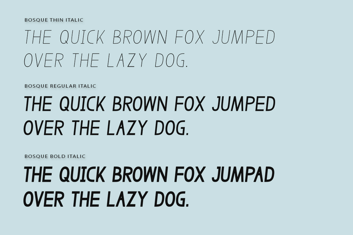 Bosque Typeface example image 5