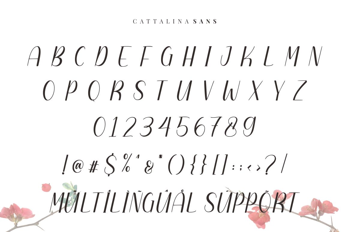 Cattalina - Beauty Script Font example image 6