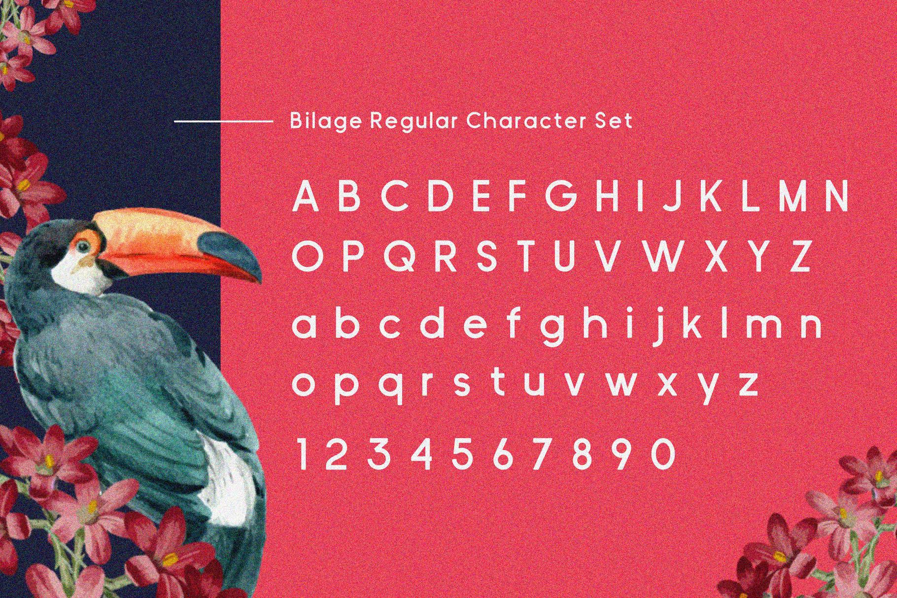 Bilage example image 6