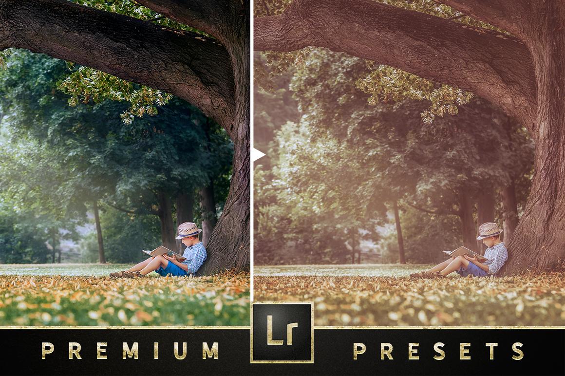 Super Matte Lightroom Collection example image 5