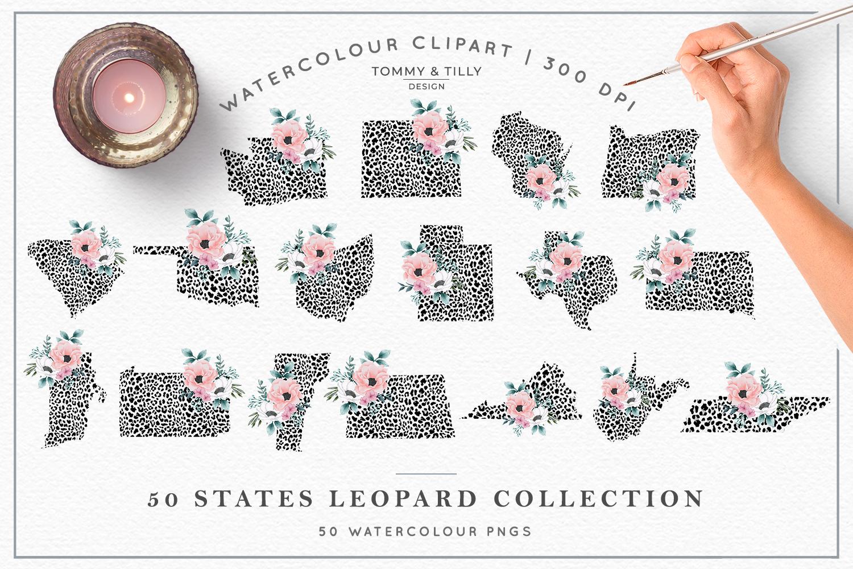 Leopard Print 50 States Bundle - Clipart PNG Sublimation example image 2