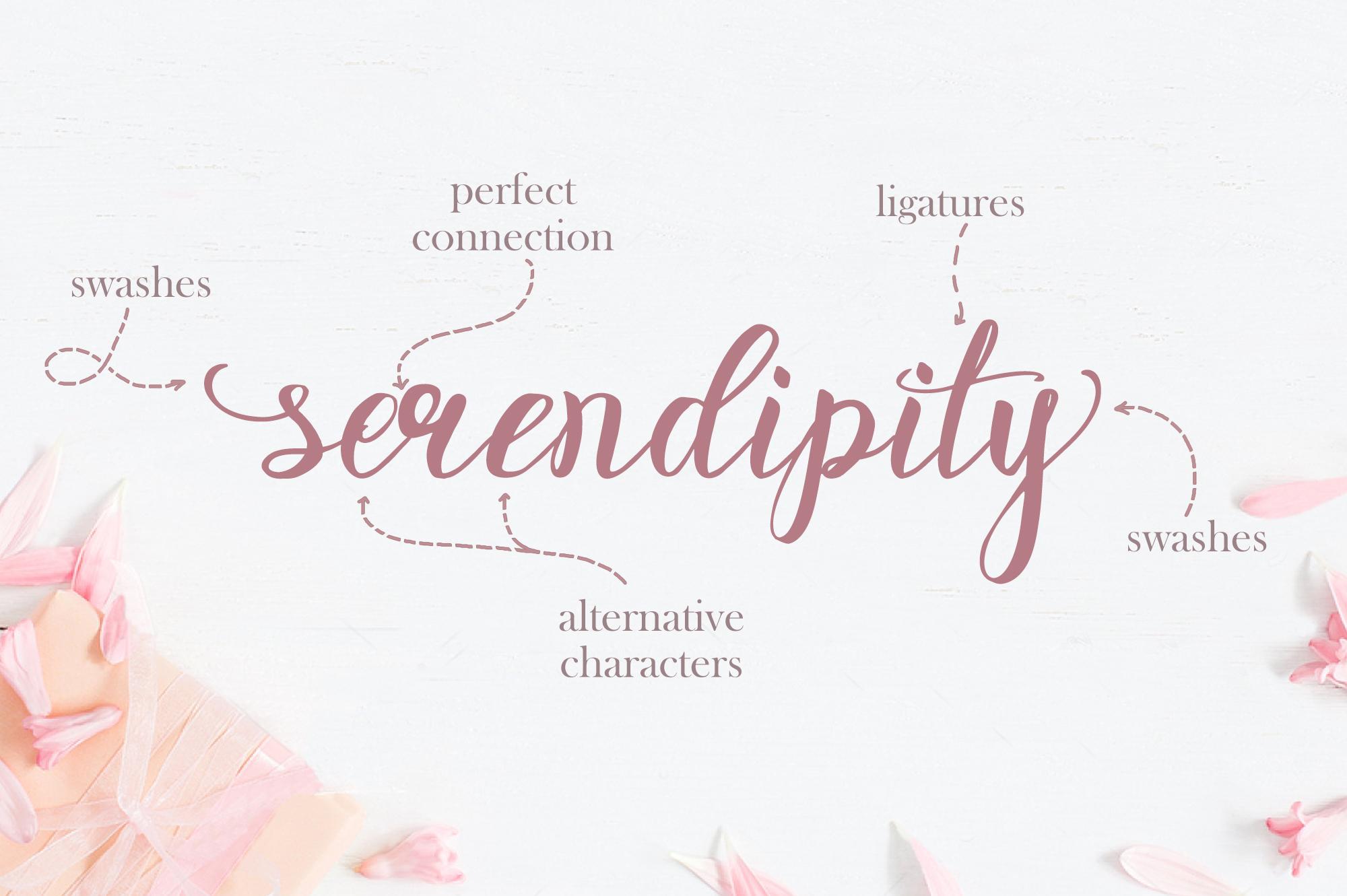 Rosita script - stylish brush font example image 6